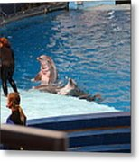 Dolphin Show - National Aquarium In Baltimore Md - 1212174 Metal Print by DC Photographer