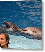 Dolphin Show - National Aquarium In Baltimore Md - 1212177 Metal Print