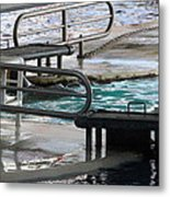 Dolphin Show - National Aquarium In Baltimore Md - 12122 Metal Print