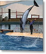 Dolphin Show - National Aquarium In Baltimore Md - 1212273 Metal Print by DC Photographer