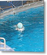 Dolphin Show - National Aquarium In Baltimore Md - 121236 Metal Print