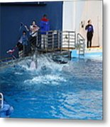 Dolphin Show - National Aquarium In Baltimore Md - 121292 Metal Print