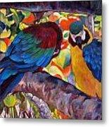 Dominican Birds Metal Print
