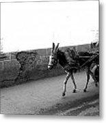 Donkey Cart In Marrakech Metal Print