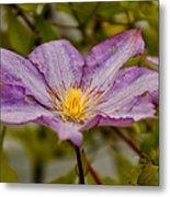 Donna's Purple Flower Metal Print