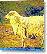 Dont Be Sheep, You Said, But I Just Can't Help It Metal Print