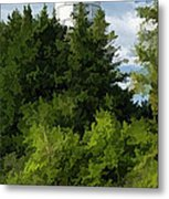 Door County Cana Island Vertical Panorama Metal Print