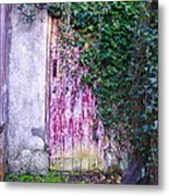 Door Covered In Ivy Metal Print