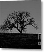 Dormant Tree On Hill Metal Print