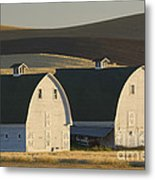 Double Barns Metal Print