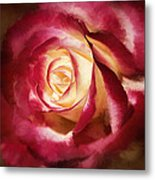 Double Delight Beauty Metal Print