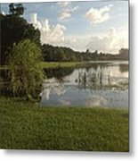 Double Look At The Farm  Metal Print