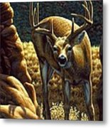 Whitetail Buck - Double Take Metal Print by Crista Forest