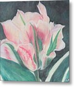 Double Tulip Metal Print by Cathy Lindsey