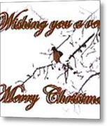 Dove - Snowy Limb - Christmas Card Metal Print