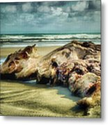 Down By The Sea Metal Print