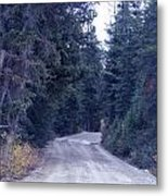 Down Nature's Highway Metal Print
