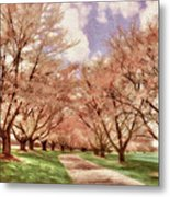 Down The Cherry Lined Lane Metal Print