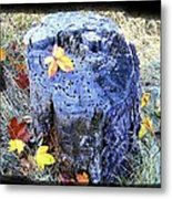 Down To Earth Beauty Metal Print