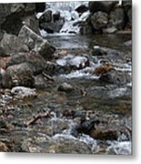 Downstream Metal Print