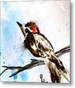 Downy Woodpecker Sumi-e Metal Print