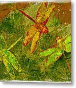 Dragonflies Abound Metal Print