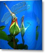 Dragonfly And Bud On Blue Metal Print