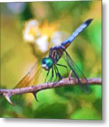 Dragonfly Art - A Thorny Situation Metal Print
