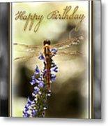 Dragonfly Birthday Card Metal Print by Carolyn Marshall