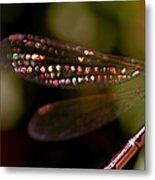 Dragonfly Jewels Metal Print