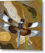 Dragonfly Waiting For A Fly Metal Print