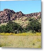 Dragoon Mountains Metal Print