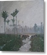Drainage Channels On The West Coast Metal Print