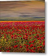 Drama Over The Flower Fields Metal Print
