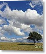 Dramatic Clouds And The Tree Metal Print