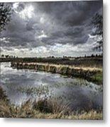 Dramatic Swamp... Metal Print by Israel Marino