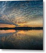 Drawn To The Sun Metal Print