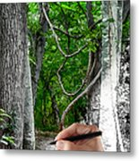 Drawn To The Woods With Imagination Metal Print
