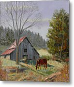 Dream Acres Metal Print