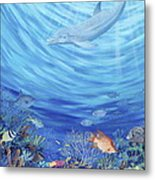 Dream Reef Metal Print