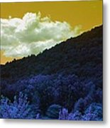 Dream Scape Metal Print by Michael Sokalski