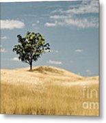 Dream Tree Metal Print