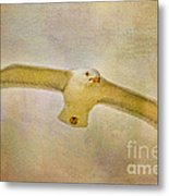Dream World Seagull Metal Print