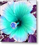 Dreamflower Metal Print
