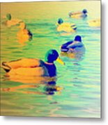 Ducks Dreaming Of Dreaming Ducks  Metal Print