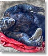 Dreaming Of Bananas Chimpanzee Metal Print