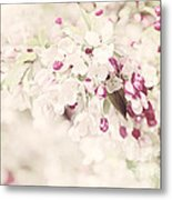 Dreaming Of Spingtime Blossom Metal Print