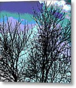 Dreaming Of Spring Through Icy Trees Metal Print
