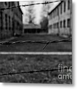 Dreaming Of Freedom Metal Print