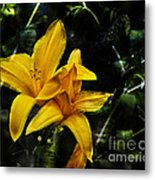 Dreams Of A Day Lily Metal Print